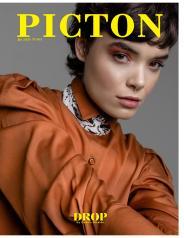 Picton Magazine - January 2020